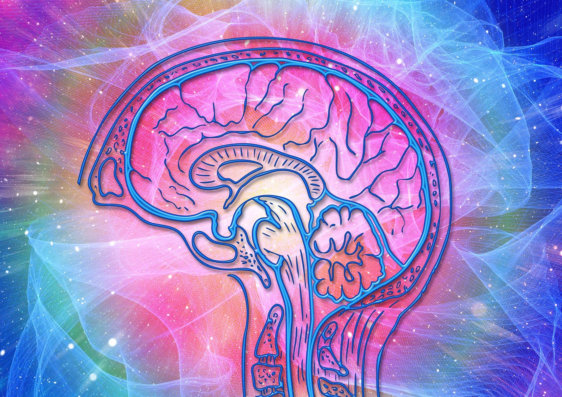 Szkoła Psychoterapii Crescentia